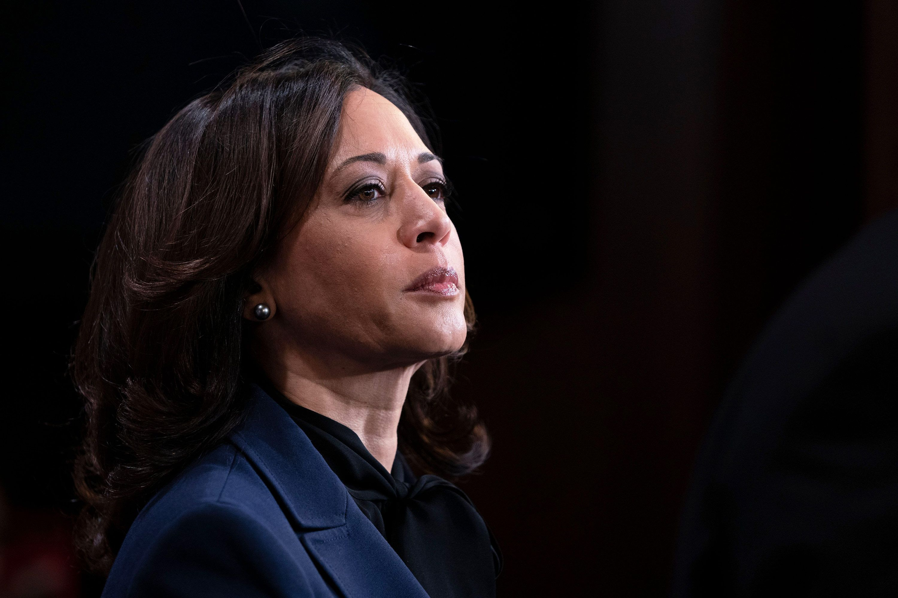 Kamala Harris: A beginner's guide to being vice-president
