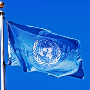 business-leaders-will-join-government-and-un-chiefs-to-build-forward-better