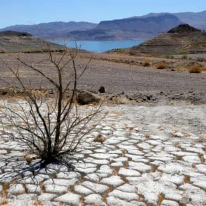 U.S. Likely Claims Hottest Place On Earth As Heat Tightens Grip On More Than 100 Million