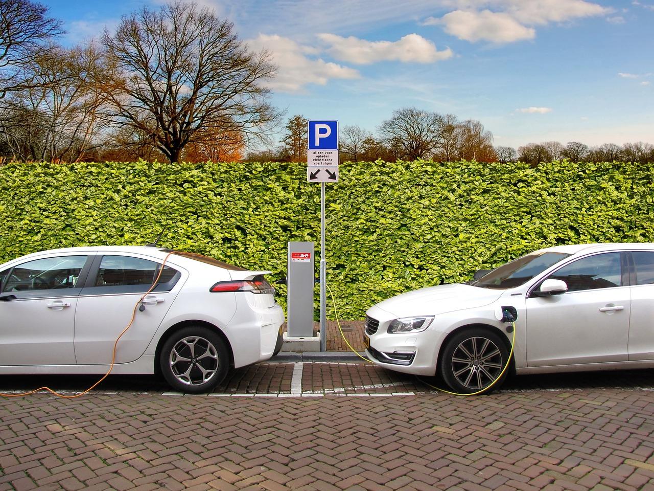 Warren Buffett- Backed  BYD Electric Cars Soared Sales by 300%