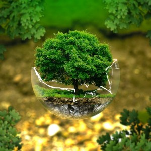 the-environment-is-gen-zs-no-1-concern-and-some-companies-are-taking-advantage-of-that