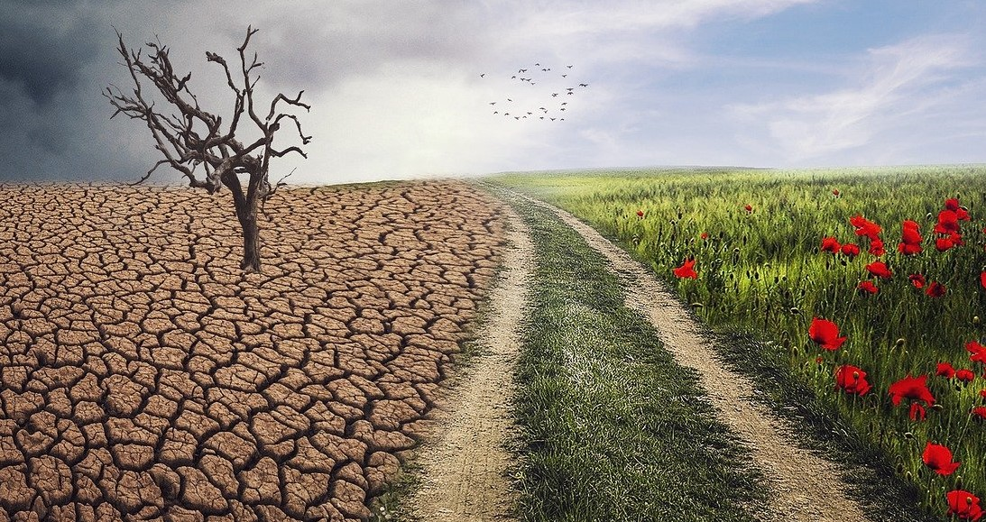 Climate Change Impact On Your Finances, How Can Treasury Department Help