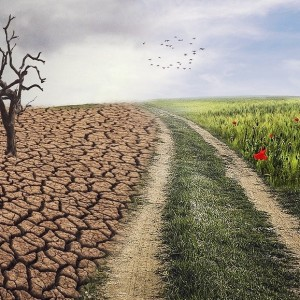 climate-change-impact-on-your-finances-how-can-treasury-department-help