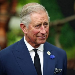 prince-charles-i-understand-climate-activists-anger